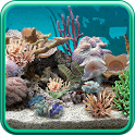 3D Aquarium Live Wallpaper PRO 1.0.2 apk